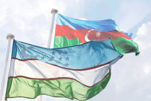 Азербайджану стоит изучить опыт Узбекистана в реализации хлопка