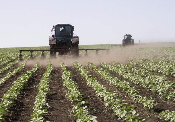 fermer-farm-selskoe-xozaystvo-agriculture-2