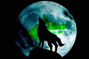 Образ волка в мифах и преданиях