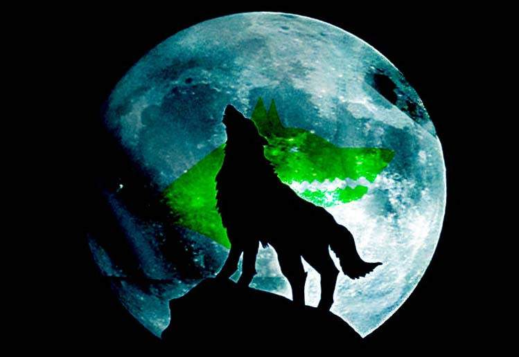 volk-wolf