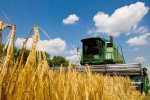 Аграрный сектор Азербайджана задыхается без «длинных» денег