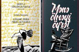 Молдавская литература в Азербайджане
