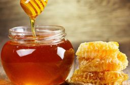 Азербайджан может завоевать 1% от мирового экспорта меда
