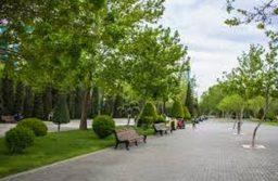 Баку задыхается