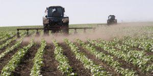 В Азербайджане появятся рынки для фермеров?
