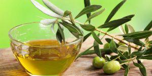 Азербайджан может экспортировать масло высшего качества, но...