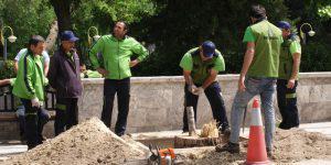 Трудолюбивые азербайджанцы готовы работать в праздники - лишь бы заработать